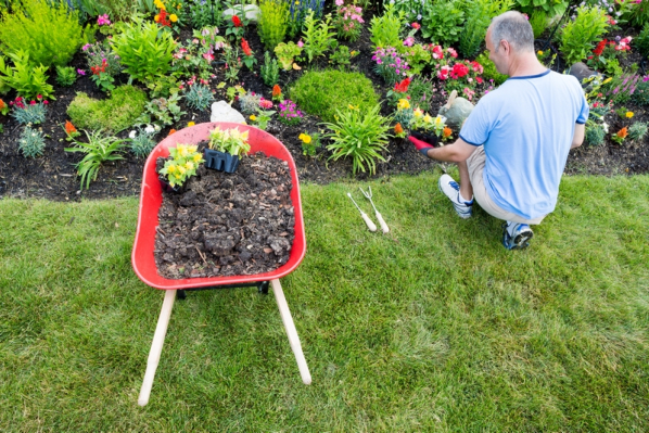 Gardening-Tips-with-a-Senior-Loved-One